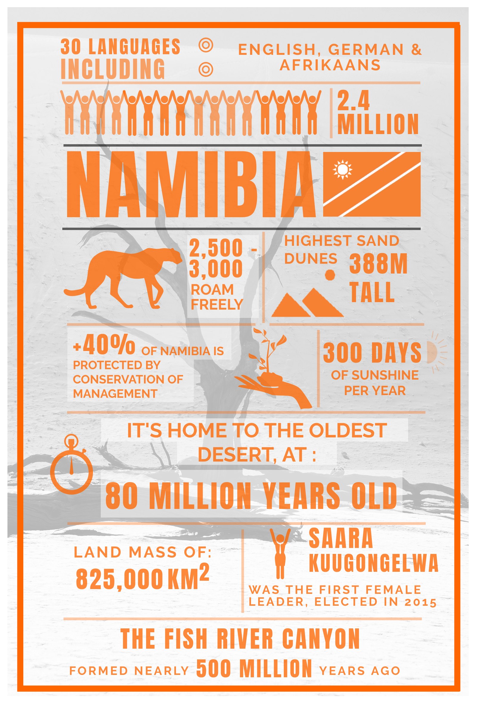 Facts About Namibia You Probably Didn't Know Tusk Photo